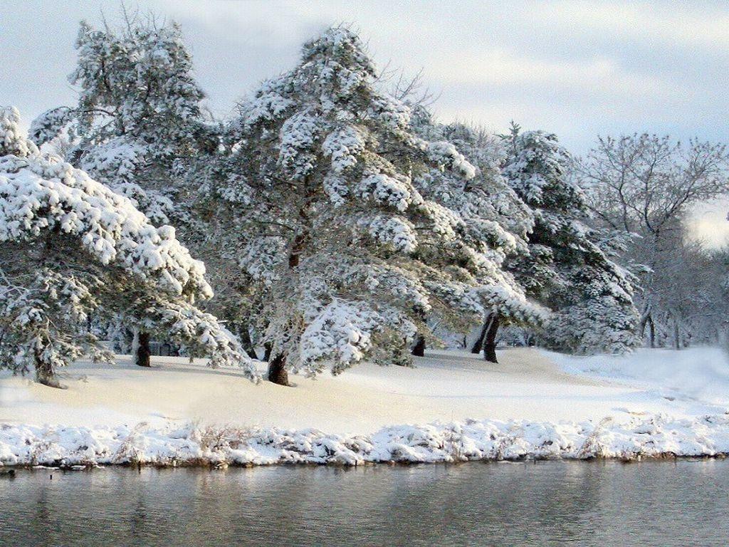 Photos Naturelles:Paysages enneigés